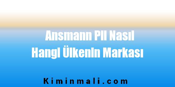 Ansmann Pil Nasıl Hangi Ülkenin Markası