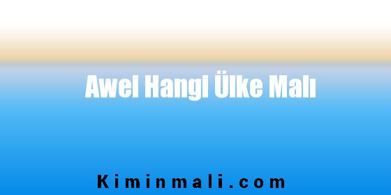 Awei Hangi Ülke Malı