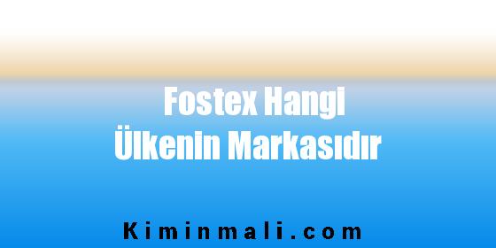 Fostex Hangi Ülkenin Markasıdır