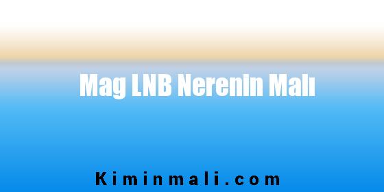 Mag LNB Nerenin Malı