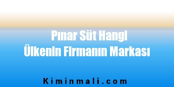Pınar Süt Hangi Ülkenin Firmanın Markası