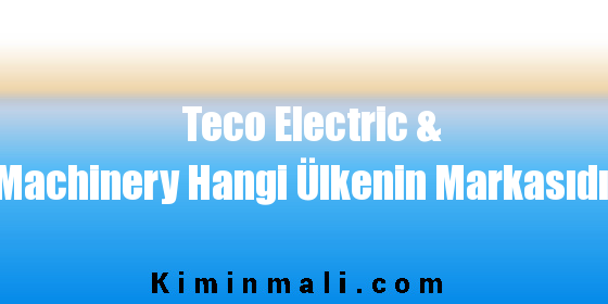 Teco Electric & Machinery Hangi Ülkenin Markasıdır
