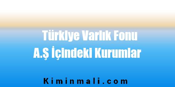 Türkiye Varlık Fonu A.Ş İçindeki Kurumlar