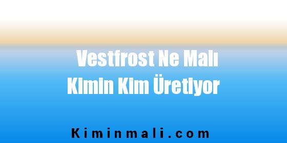 Vestfrost Ne Malı Kimin Kim Üretiyor